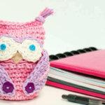 Crochet Owl Apple Cozy