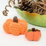 A Pumpkin Needle Felting Project