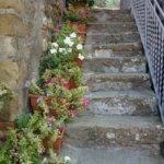 The Irish Lace Tradition in Isola Maggiore, Umbria, Italy